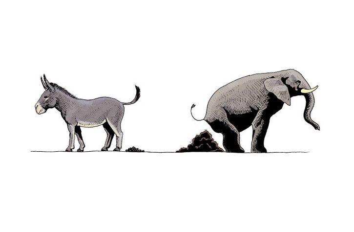 elefante y burro popo