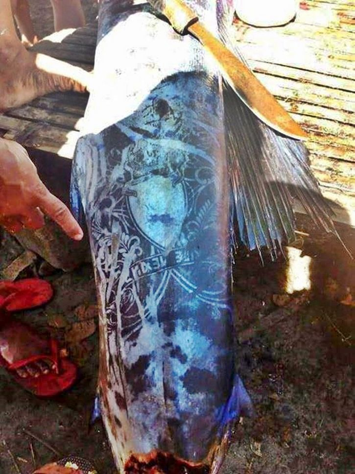 pez con tatuajes en filipinas (2)