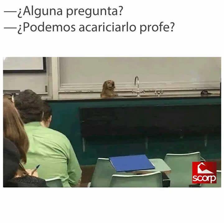Marcianadas 284 020617000301 (226)