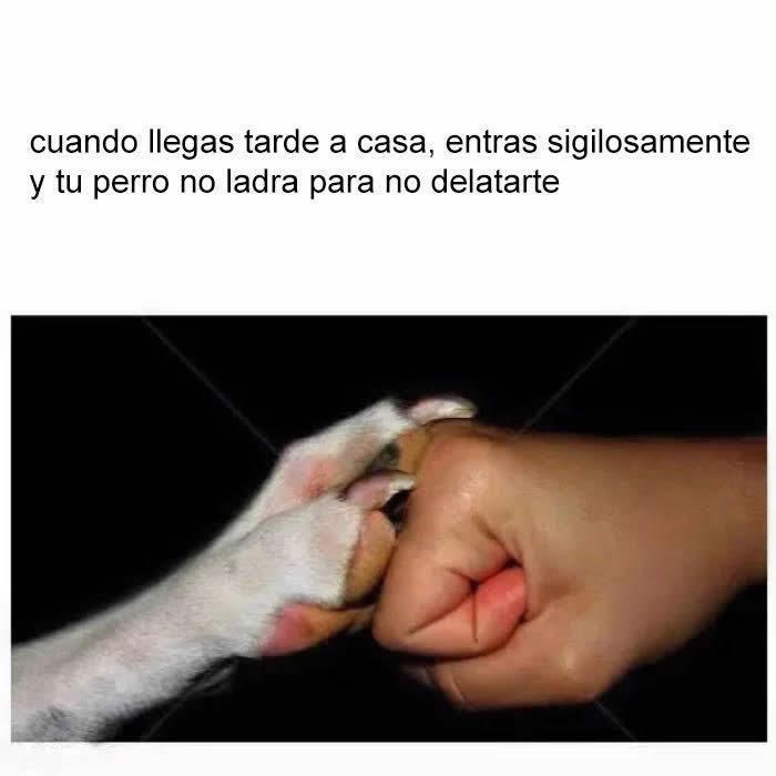Marcianadas 284 020617000301 (239)