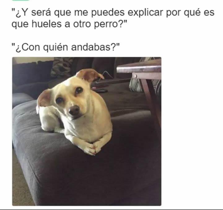 Marcianadas 284 020617000301 (83)