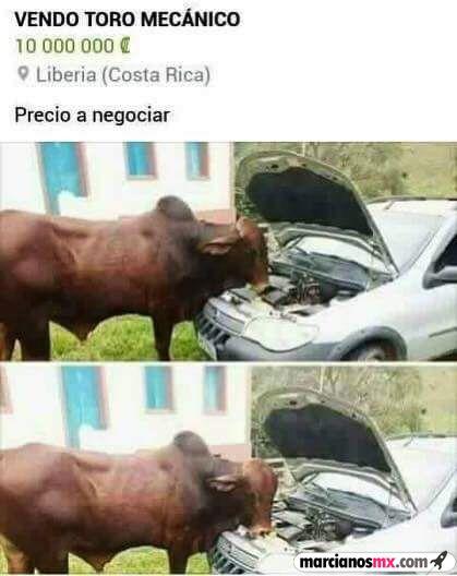 Marcianadas 286 160617002137 (275)