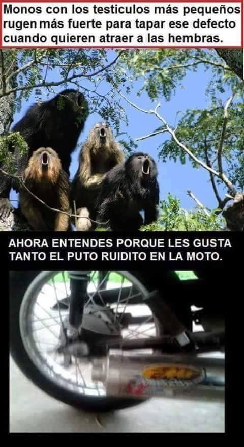 Marcianadas 287 230617001536 (146)