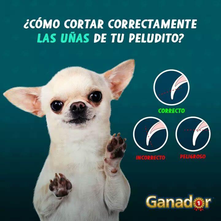 Marcianadas 287 230617001536 (201)