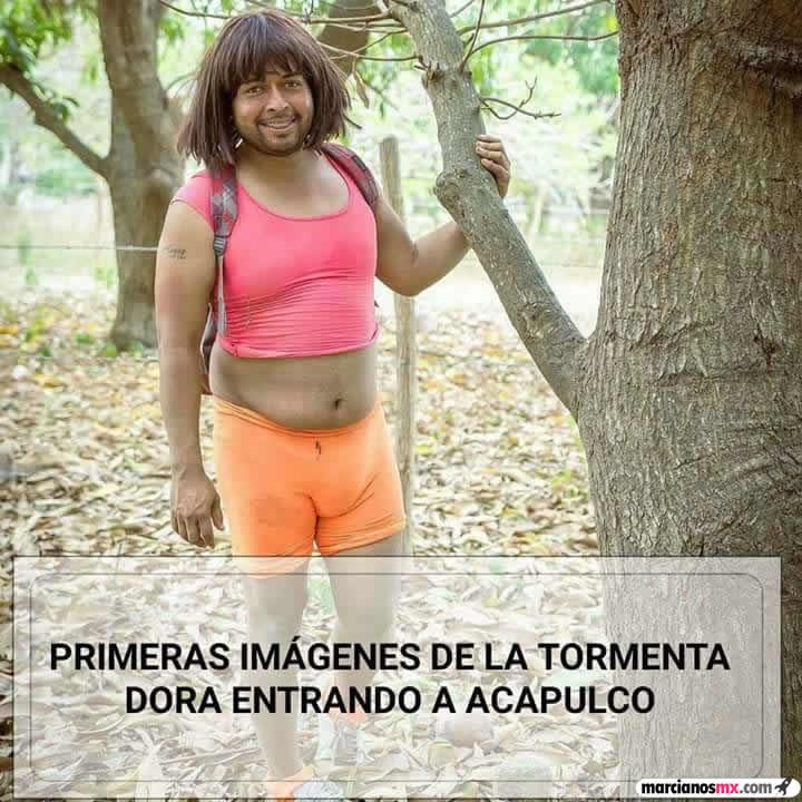 Marcianadas 288 30061701541 (185)