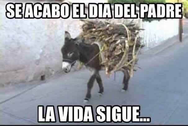 Marcianadas 288 30061701541 (56)