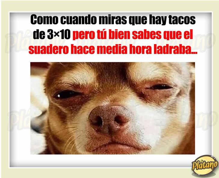 Marcianadas 288 30061701541 (91)