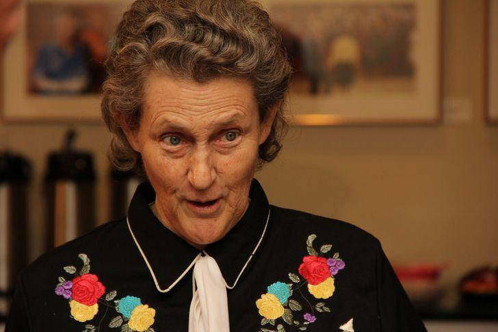 Temple Grandin savant autista