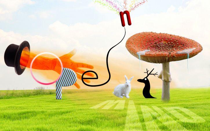 alucinaciones hongos mente abierta