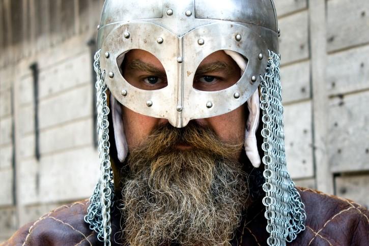 Guerrero vikingo portada