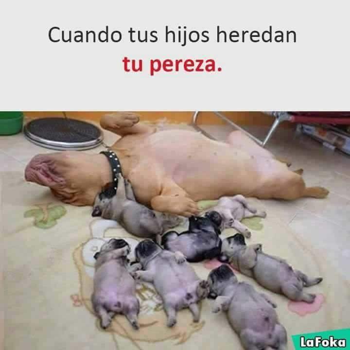Marcianadas 291 210717001518 (134)