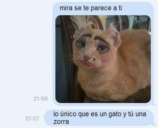 Marcianadas 291 210717001518 (207)