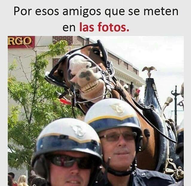 Marcianadas 291 210717001518 (35)