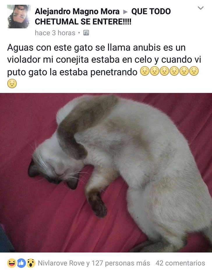Marcianadas 292 28071701656 (172)