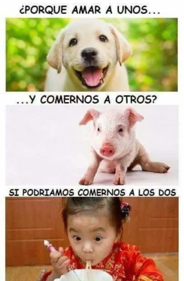 Marcianadas 292 28071701656 (255)