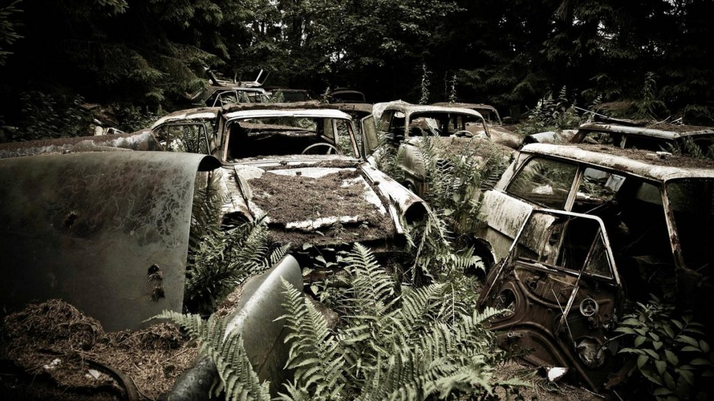cementerio de autos abandonados en belgica (1)