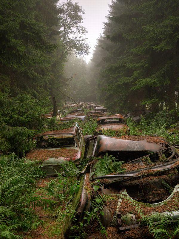 cementerio de autos abandonados en belgica (2)