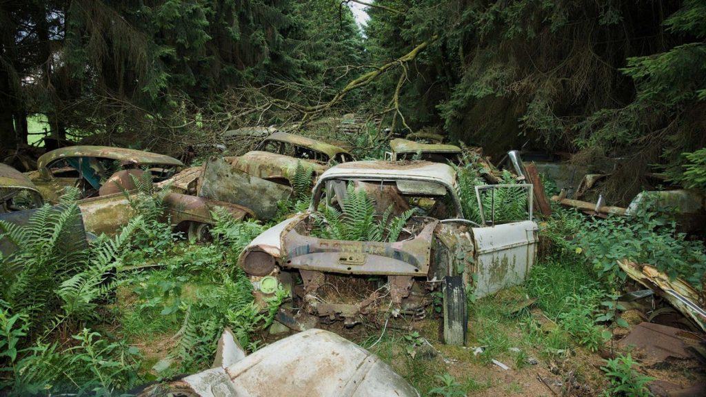cementerio de autos abandonados en belgica (3)