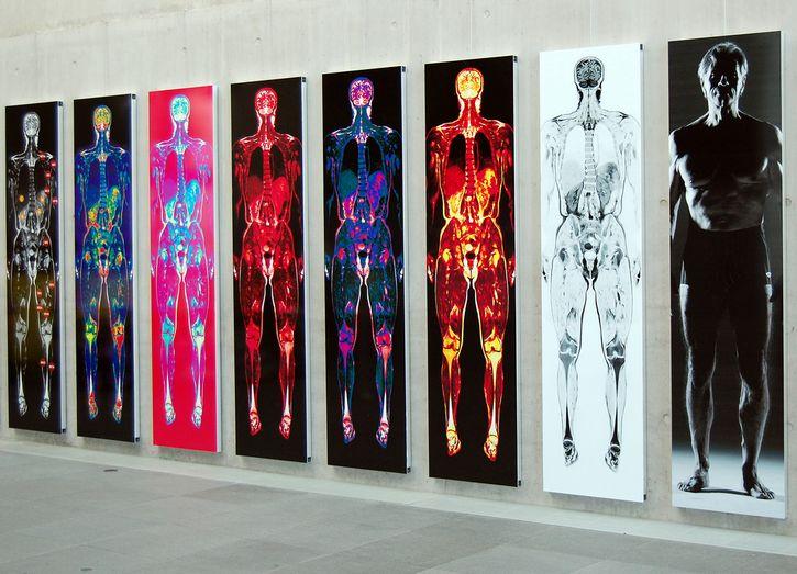 exposición artistica tomografia