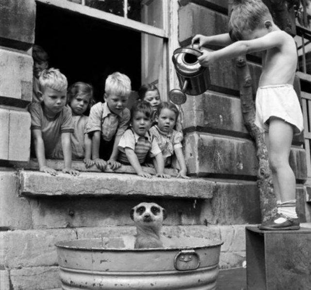 fotografios historicas raras (11)