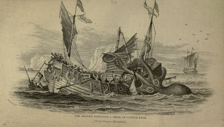 ilustracion kraken hunde barco madera