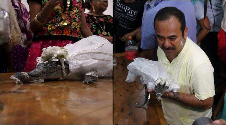 oaxaca matrimonio cocodrilo (1)