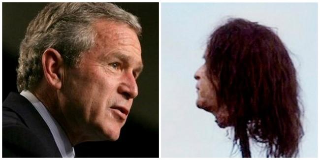 Cabeza de Bush estaca GoT