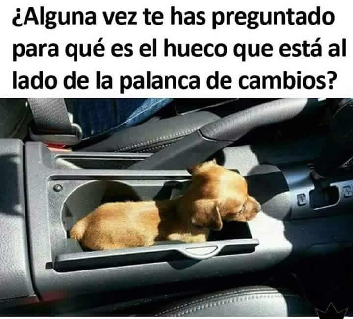 Marcianadas 293 040817001645 (133)