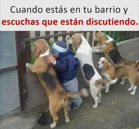 Marcianadas 293 040817001645 (97)