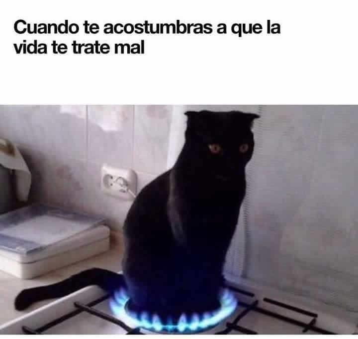 Marcianadas 297 010817001427 (171)