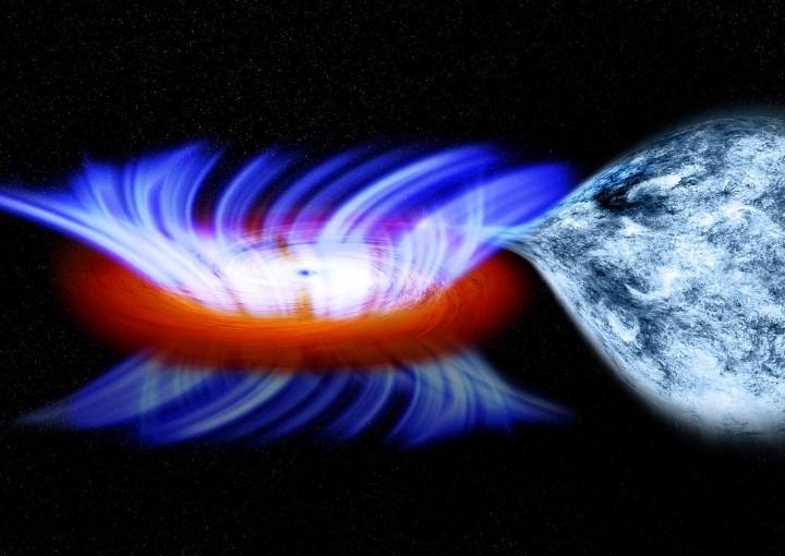 agujero negro masivo absorbe estrella