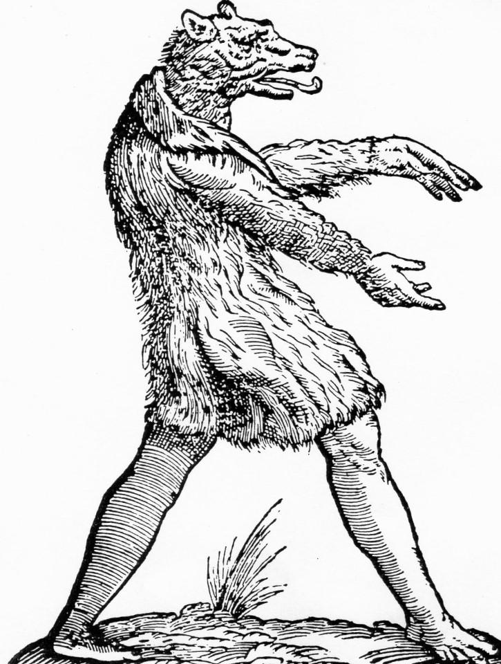 hombre lobo oveja dibujo