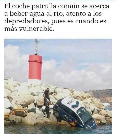 Marcianadas 299 150917001647 (104)