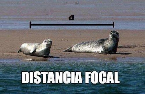 Marcianadas 300 220917000809 (156)