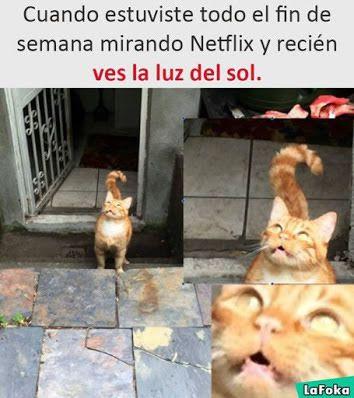 Marcianadas 301 290917001552 (1)