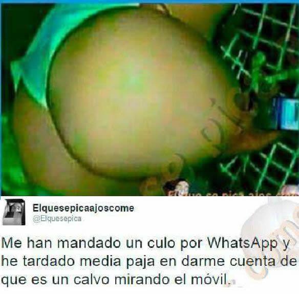 Marcianadas 301 290917001552 (231)