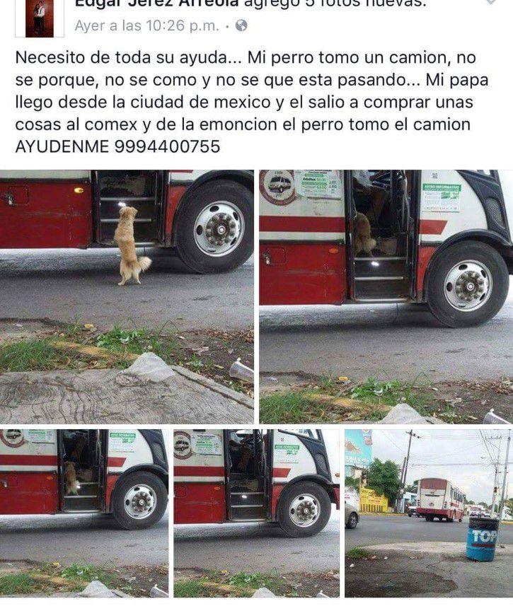 Marcianadas 301 290917001812 (29)