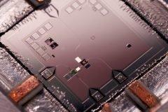 computadora cuantica procesador