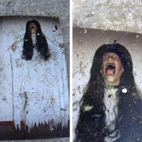 imagenes macabras (4)
