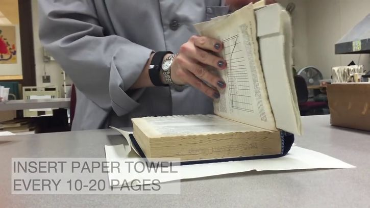 insertar toallas de papel entre paginas