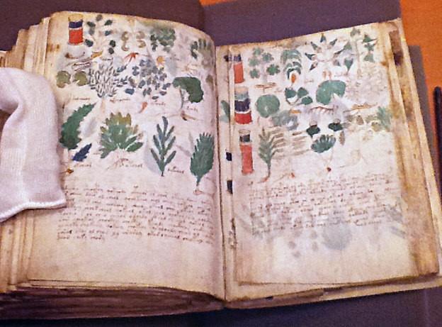 libro manuscrito voynich real