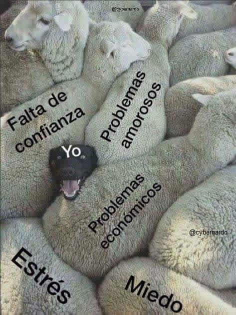 Marcianadas 302 061217001531 (190)