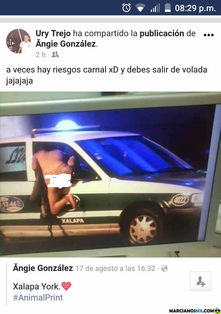 Marcianadas 304 201017001426 (310)