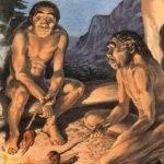 Diente de 9.7 millones de años encontrado en Alemania puede replantear la historia humana