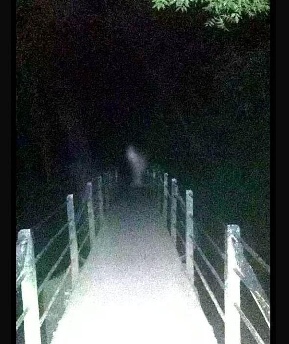 imagenes de fantasmas reales (11)