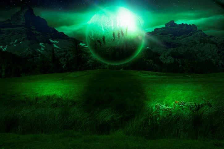 ovni verde