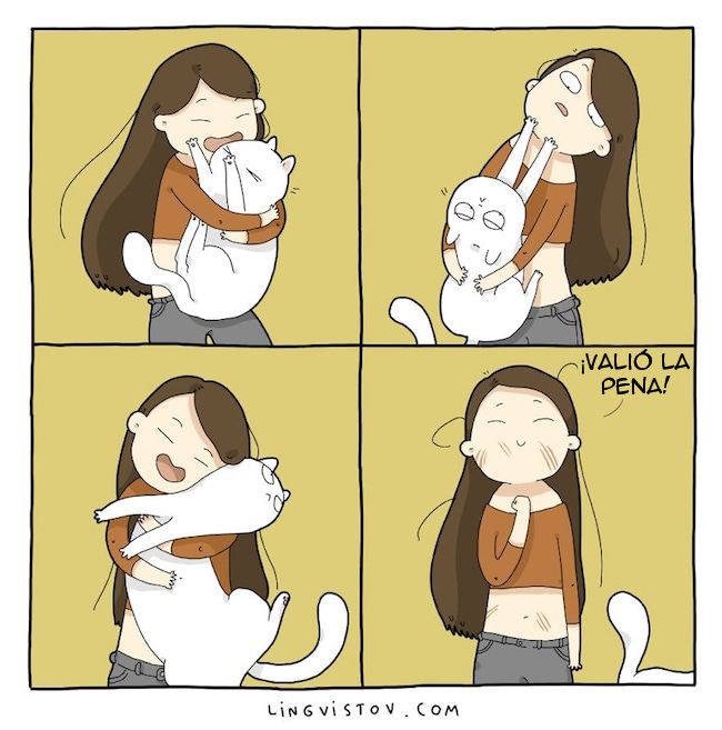 viviendo con gatos (1)