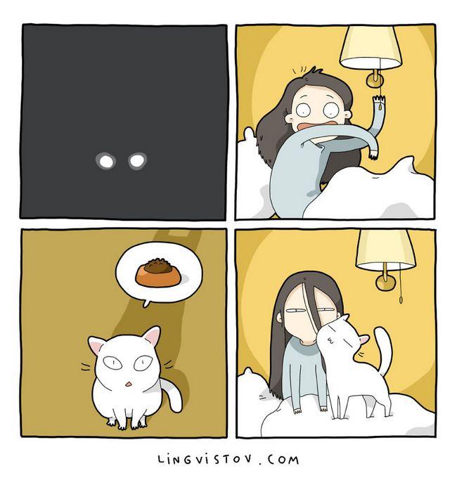 viviendo con gatos (10)