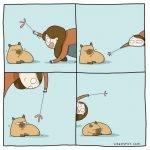 17 situaciones muy familiares para los que tienen gatos