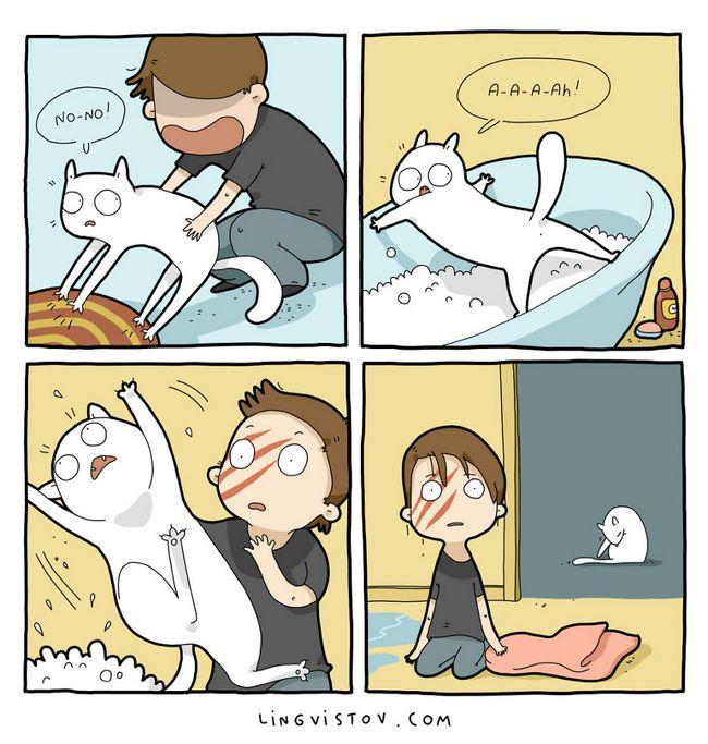 viviendo con gatos (17)